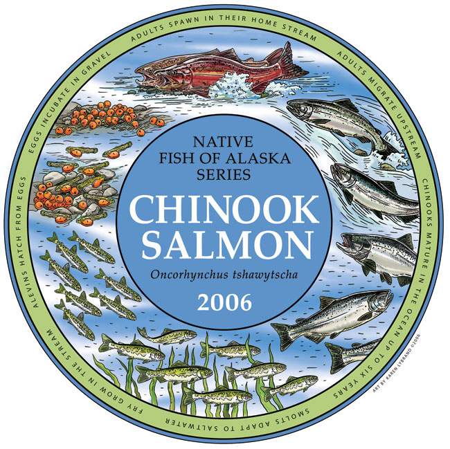 Chinook Life Cycle